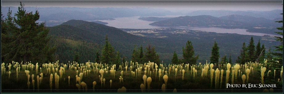 Photo of Sandpoint, Idaho taken from the top of Baldy Mountain