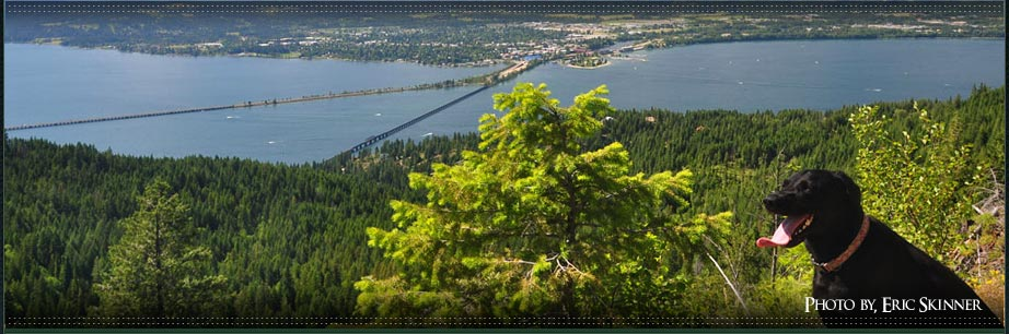 Photo of Lake Pend Oreille and the long bridge